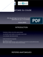Anatomie-du-coude-min
