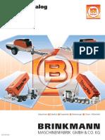 brinkmann.pdf