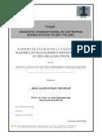 rapport DO.pdf