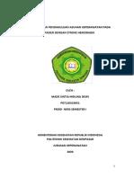 LP SH_SINTIA.pdf