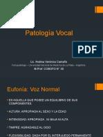 Patologia vocal disfonias