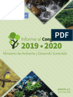 INFORME AL CONGRESO 2019 - 2020 MINAMBIENTE  version liviana.pdf