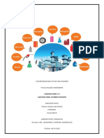 Informe Alifaticos   Alan Ruben Chavez Quispe.pdf