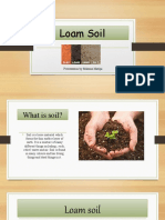 Loam Soil -