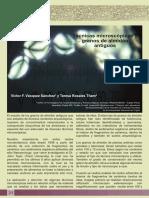 Dialnet-TecnicasMicroscopicasYGranosDeAlmidonAntiguos-2982289 (1).pdf