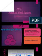 Arteritis viral equina