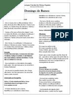 domingo-de-ramos-2020_11-03-2020_15-12-03.pdf