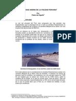 realidad vialidad peruana (Pablo del Aguila)