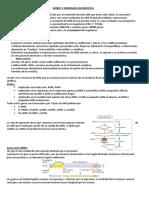 Chopita - 1 Genes y genomas
