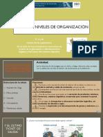 Ciencias clase 3 niveles de organizacion 08.09.20