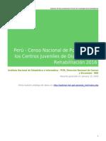 Censo de centros juveniles 2016