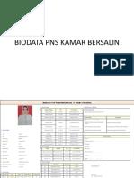 PP biodata PNS.pptx