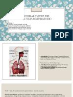 Generalidades del sitema respiratorio.