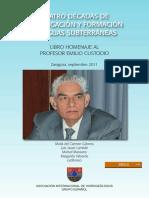 Custodio Aguas Subterraneas 2011