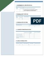 Modelo CV para construcción