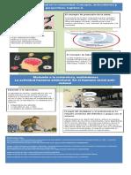 Infografia. Ecologia Humana....pdf