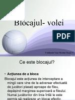 Blocaj - Volei