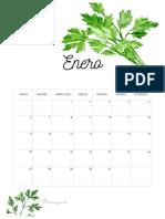 Calendario_con_plantas_medicinales_Via_www.sweethings.net