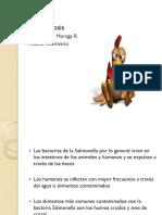 Salmonelosis en aves de corral