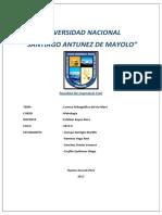 INFORME1 HIDROLOGIA.docx