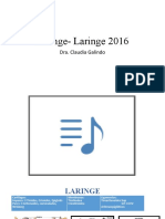 4ta clase Faringe-laringe 2016