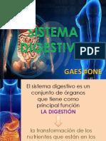 sistemadigestivoexposicion-150914182738-lva1-app6892