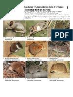 2018 Guia de marsupiales, roedores y murcielagos del occidente del sur de Peru - Field Guides 1079.pdf