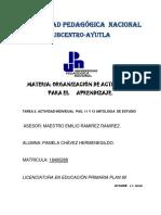 Criterios y Elementos para la Elaboracion de una Propuesta Pamela Chavez.pdf