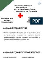 Animais peçonhentos-Dra Emilia - 2020.pptx
