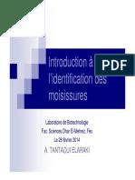 introduction-c3a0-lidentification-des-moisissures