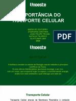 Projeto Integrador Biofísica OFICIAL