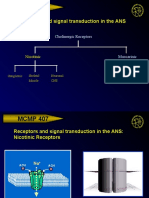 ans-receptors-overview