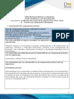 Guía para el Desarrollo del Componente Práctico virtual (2).pdf
