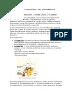 OPINIÓN DOCUMENTADA DE LA ACTIVIDAD REALIZADA5