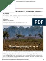 3 Artigo Os latifundiários da Uma visao popular do Brasil e do mundo