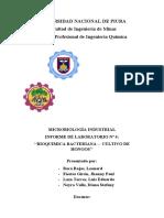 INFORME N4 Bioquimica Bacteriana Cultivo de Hongos