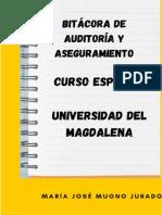 BITÁCORA DE AUDITORIA Y ASEGURAMIENTO.pdf