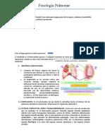 Neumologia fisio.docx
