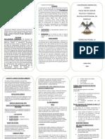 resumen en triptico.pdf