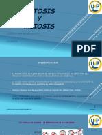 PARA INFORME.pdf