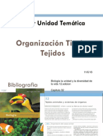 17. Organizacion Tisular I