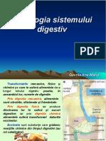 lectie_21_fiziologia_si_igiena_sistemului_digestiv.
