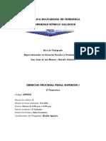 DERECHO PROCESAL PENAL SUPERIOR I