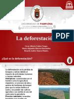Deforestación (1).pptx
