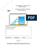 REPORTE PRÁCTICA PRESIÓN HIDROSTÁTICA (5).docx