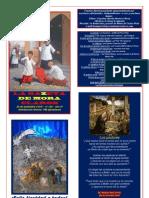 La Gazeta de Mora Claros nº 104 - 24122010
