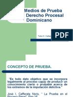 PRESENTACION LOS MEDIOS DE PRUEBA 22 DE OCTUBRE DEL 2020