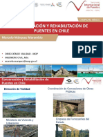 11.-marcelo-marquez puente.pdf