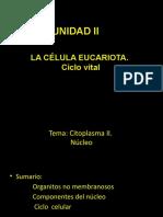 LA CÉLULA 2