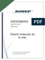 Diseño Molecular de la vida.pdf